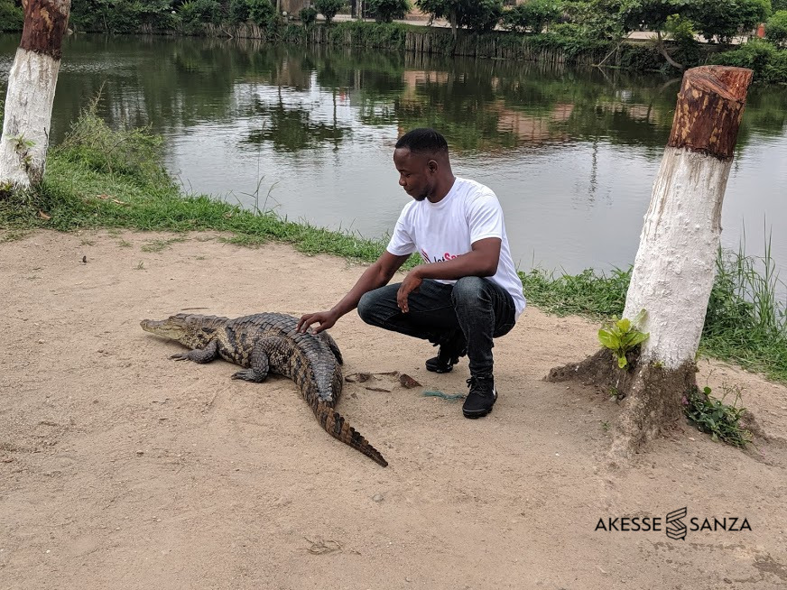 Friendly Crocodiles at Hans Cottage Hotel